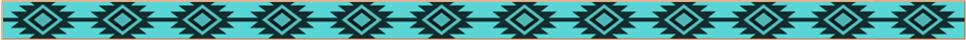 Turquoise bar divider